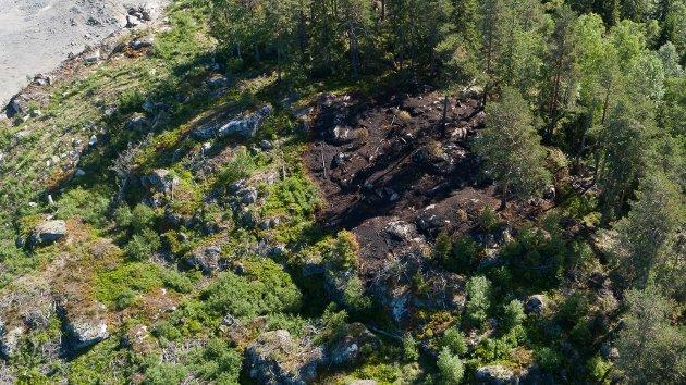 Området hvor det var skogbrann ved Heier Pukkverk fredag 1. juni.