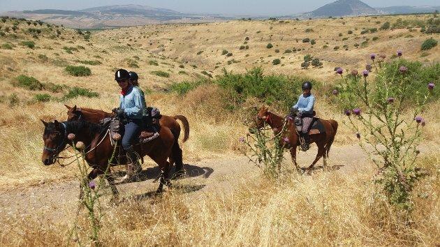 FORSMAK: Fra ridningen i Galilea før vi reiste til Judeaørkenen.