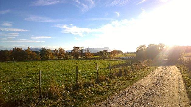 Jordbruk i Nordland.