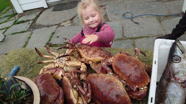 Liv på 3 år var med besto på fisketur i Åkrafjorden. Her ser du noko av fangsten! (Foto: Gunnlaug Vågen Tjelmeland).