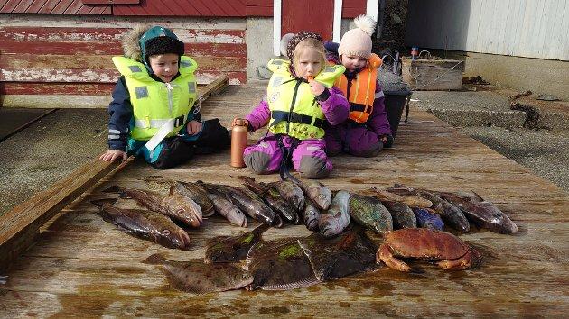 Sjekk den flotte fangsten! Dei fekk torsk, lysing, lyr, raudspetter, hyse, berggylte, pale og ein svær krabbe. Kortreist fisk er god mat, og dette skulle seinare i veka bli til ein flott fiskemiddag.