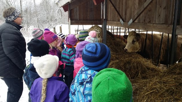 Barna fikk møte dyrene på gården, og kanskje de så fjøsnissen?