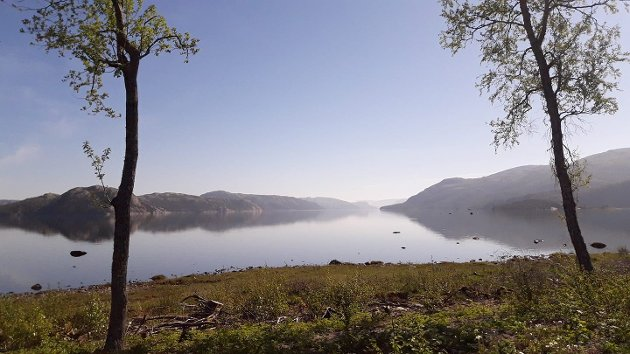 Utsikt mot Salvatnet på Salsnes, ikke langt fra det planlagte masseuttaket