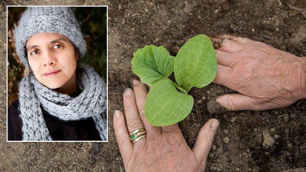 Et typisk nordisk kosthold slipper ut 3 ganger så mye klimagassutslipp og bruker dobbel så mye jordbruksareal enn hva som er bærekraftig, skriver Siri Martinsen, NOAH.