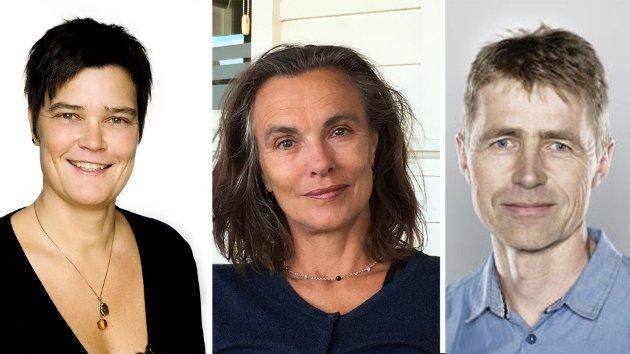– Vår forskning viser at for en gitt ambisjon om å bidra til globale utslippskutt, vil det være kostnadseffektivt å kombinere innenlandske utslippskutt med kutt i oljeproduksjonen, skriver Taran Fæhn (SSB), Cathrine Hagem (SSB) og Knut Einar Rosendahl (NBMU).