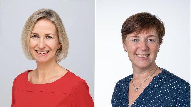 Artikkelforfattere: Marit L. Mellingen og Ingvill Dahl