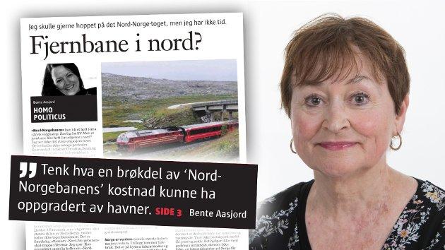 Her har vi enda et eksempel på den kjente øvelsen splitt-og-hersk, skriver Gerd Bjørhovde om Klasskampen-kronikken fra statsviter og spaltist Bente Aasjord i Nordland.