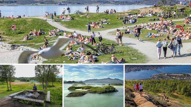 Tromsø er bylivet og naturen som går over i hverandre. Få, om noen plasser, har du så rask tilgang på både by og natur.