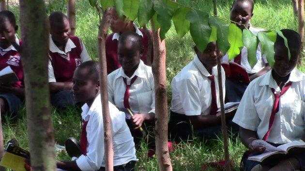 AKTIVT ENGASJEMENT: Skogplanting har blitt obligatorisk i en del skoler i Kenya.