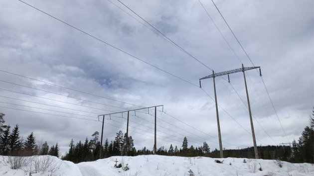 DYRERE: - Investeringene i kraftnettet vil kunne øke kraftprisen i med 10 øre/kWh, og øke nettleien med 0,6 øre/kWh for vanlige kunder og 0,2 øre/kWh for kraftkrevende industri, skriver Cecilie Bjelland.