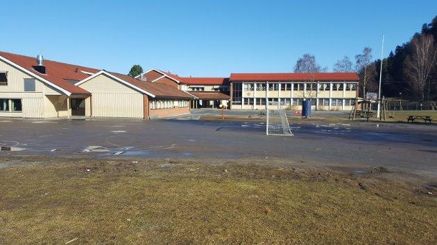 Hedrum barneskole