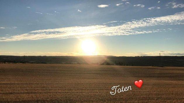 Solnedgang i nytresket åker