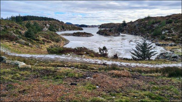 BYNGJA: Ein av Alver kommune sine dagsturhytter skal plasserast på Byngja på Radøy. Styret i Kobbevågen meiner den planlagde plasseringa av hytta er heilt feil.
