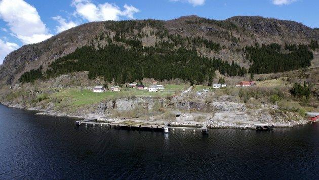 SAMLAR PENGAR: Årsmøtet i Raudt Sogn og Fjordane har begynt innsamlingsaksjon for å kunne betale bøter når aksjonistane igjen set seg ned på Engebøfjellet.