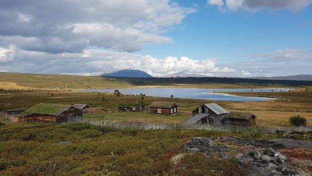 NY DNT-HYTTE: DNT planlegger å bygge ny hytte ved Strålvatnet. Innsenderen utfordrer til å tenke på hva dette vil bety for naturmangfoldet i området.