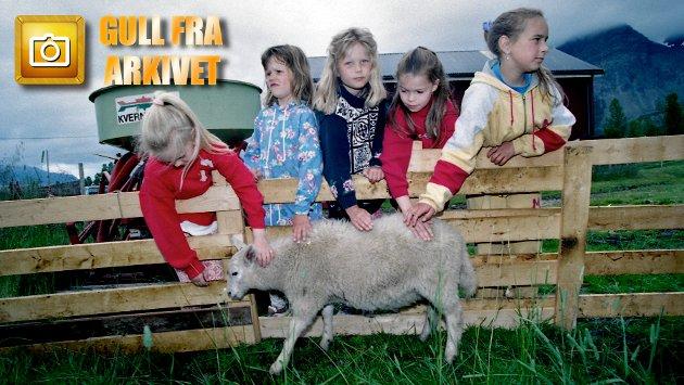 """Det er """"åpent fjøs"""" hos bonde Jarle Johnsen i Lakselvbukt denne sommerdagen for 25 år siden. De tradisjonsrike Lakselvbuktdagene er i full gang og tunet hans yrer av dyr og nysgjerrige unger. Her er det Gøril Ringstad (10), Nina Johanne (7), Solveig Guttormsen (8), Britt Vårin Guttormsen (7) og Karianne Lilleng (9) som koser med et av lammene."""