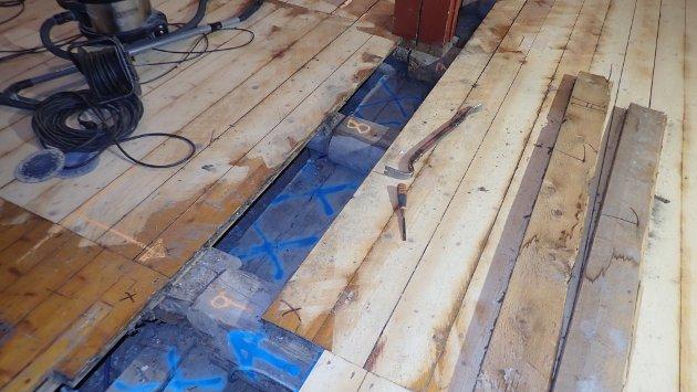 Alt som er markert med blått på gulv og vegger måtte fjernes i arbeidet med å bli kvitt hussoppen.