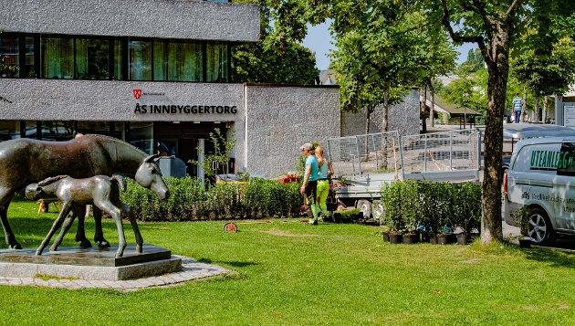 GODE KVALITETER: - Jeg var opptatt av å ta vare på det fine med Ås; bl.a. flott kulturlandskap, fine friluftsarealer, godt barnehagetilbud, gode skoler og oppvekstvilkår, god eldreomsorg, nærhet til offentlig og privat service, allsidig og rikt forenings- og kulturliv, attraktive boforhold og åpne, landlige miljøer, skriver Arne Ellingsberg.