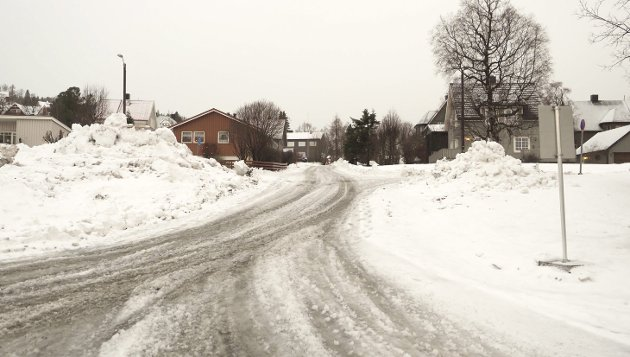 EN ANNEN VERSJON: Beboere i Tunnelveien i Narvik har en annen versjon enn Narvik kommune i spørsmålet om hvordan arbeidet med Frydenlundforbindelsen har vært håndtert.