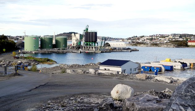 Hva inneholder utslippene på Husøya, spør artikkelforfatteren.