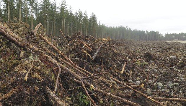 Grustaksutvidelser: - Grus er fortidens byggematerialer, sier Miljøvernforbundet Hønefoss. Leserfoto