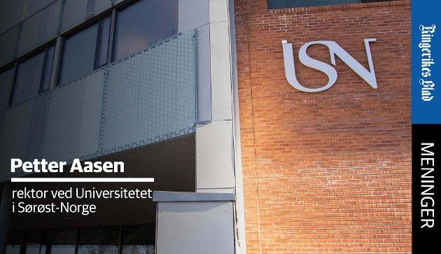 GRUNNLAG: – Kunnskaps- og kompetanseutviklingen bør organiseres slik at den legger grunnlaget for levende og bærekraftige lokalsamfunn, skriver USN-rektor Petter Aasen.