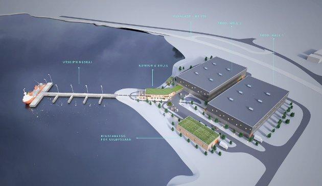 Slik tenker Morten Berg at det nye bygget vil bli seende ut på Slaggen i Bogen.