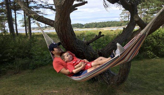 Endelig ferie: Ingenting er som å slappe av i hengekøya på hytta på Hvaler. I dag starter undertegnede fire uker ferie. Deretter venter fem uker pappapermisjon. foto: Privat