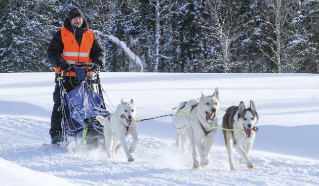 Rolf Gunnar Ånes, Mosjøen hundekjørerklubb på vei mot mål