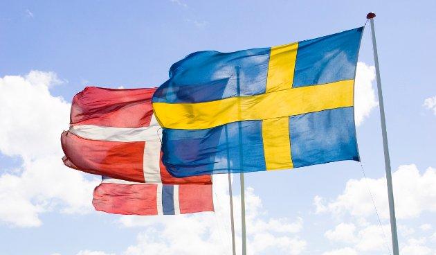Visste du at 80-90% av danske, norske og svenske ord er identiske eller ligner på hverandre, og at vi kan forstå hverandre med minimal trening?