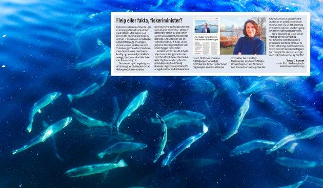 Oppdrettslaksen gjør et mye mindre innhogg i de ville sjømatresursene, enn den villfisken vi spiser. Men den viktigste årsaken til denne forskjellen er selvsagt at vi bruker planteprotein/-fett (fra bl.a. soyabønner) som en vesentlig ingrediens i laksefôret, skriver UiT-professor Even H. Jørgensen i sin kommentar til innlegget fra Toine C. Sannes.