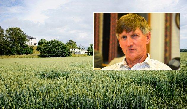 BØR VERNES: Jordvern er mer aktuelt nå enn for 15 år siden. En kvadratmeter med korn gir i gjennomsnitt ett brød per år. For Borgheim Syd utgjør det 64.000 brød årlig i hundrevis av år fremover – hva er det verdt, spør Gerhard Nilsen.