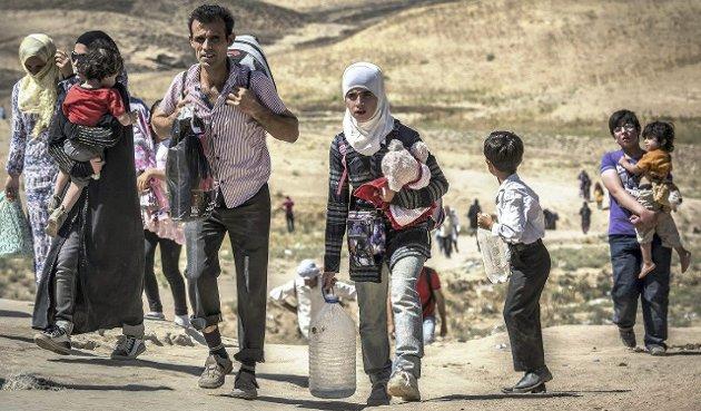 Integrering: Øystein Hanevik (MDG) lister opp momenter han mener er vesentlig for god effektiv integrering av flyktninger.