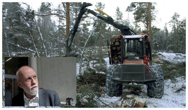 Morten Ørsal Johansen vil ha mer skogsdrift og mer treforedling.