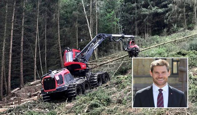SKOG: Prisene på vår egen skog i Norge er i ferd med å bli så høye at det rike oljelandet ikke lenger har råd til å eie egen grunn. Vi blir leilendinger i eget land, skriver  stortingsrepresentant Nils Kristen Sandtrøen (Ap).