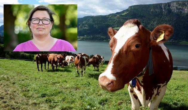 LANDBRUK: Høyre skryter av hvor bra det går for landbruket om dagen. Hvorfor oppleves det da ikke slik blant oss som har fjøsbuksa på, skriver Kristina Hegge, fylkesleder Oppland Bondelag.
