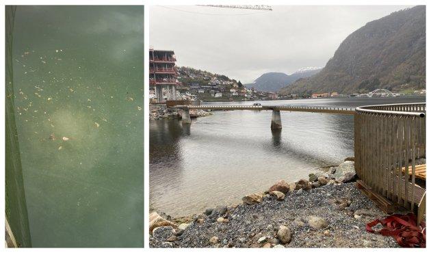 Det hastar ikkje med å døype brua på fjordstien, folk kjem til å finna på eit namn uansett. Men kloakken er det berre Sogndal kommune som kan ordna opp i, skriv redaktør Arve Uglum.