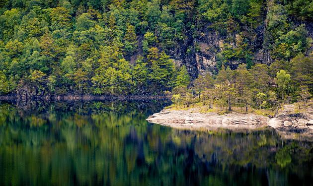 Nei til salg av Norsk natur