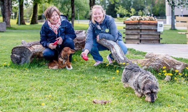 PRIORITER FRIVILLIGHET: Frivilligheten bør få bedre kår i Ås, mener Heidi Berentsen (t.v.) og Maria-Therese Jensen. Begge er kandidater for Venstre i kommunevalget.