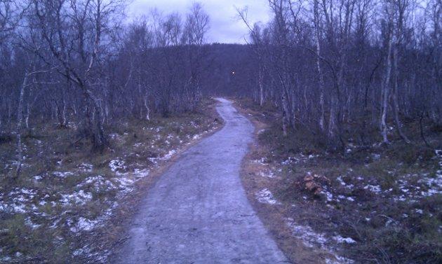 Slik så turstien ved Langvannet ut før oppgradering.