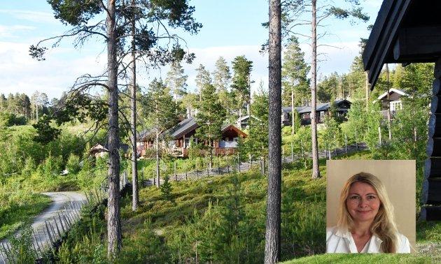 Ved å bygge hytter som forstyrrer dyre -og fuglelivet i større og større grad, bygger vi ned naturen, skriver Veslemøy Linde (MDG).