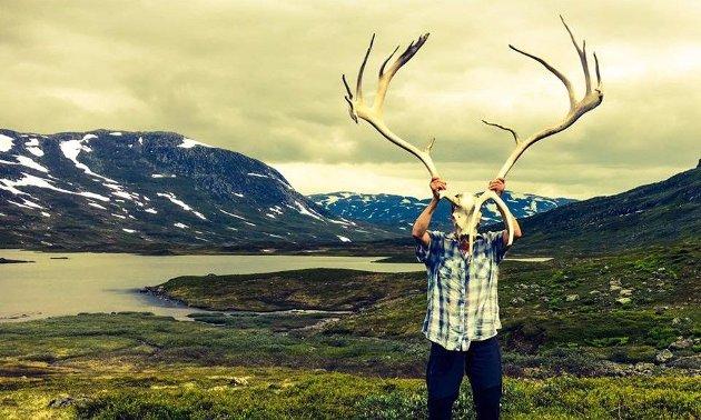 Illustrasjonsbilde: Reindrifta i Børgefjell er i akutt fare nå