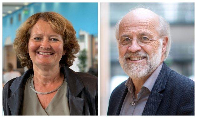 BEKYMRET: Hvorfor skal vi være bekymret for at det ikke er flere høyt utdannede innbyggere i regionen? Jo, fordi høyt kvalifiserte arbeidstakere er viktig for kvaliteten i det kommunale tjenestetilbudet (utdanning, helse, omsorg) og for næringslivets konkurranseevne, skriver Ingvild Marheim Larsen og Petter Aasen ved Universitetet i Sørøst-Norge.