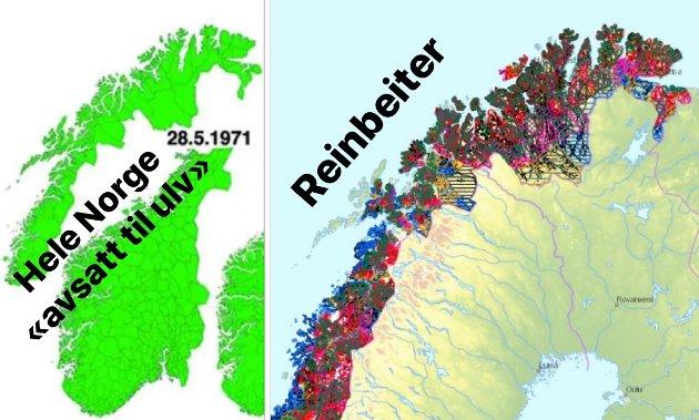 Kartet til venstre viser en falsk sannhet om at hele Norge var «avsatt område til ulv» i 1971. Kartet til høyre er kart fra fylkesmannen som viser dagens områder for ulike reinbeiter.