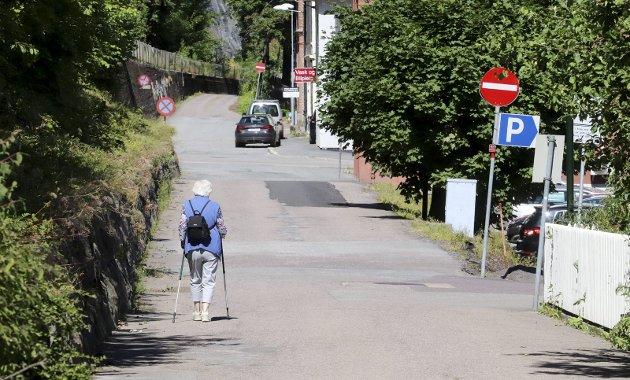 Dyrt å være fattig: Men det finnes en ekstra pott med penger i fylket, hvis politikerne vil satse på Holmestrands sentrumsvei nå. Foto: Pål Nordby