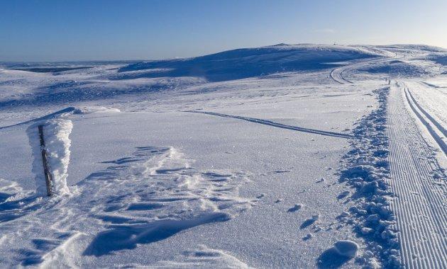 SKILØYPER: Flott, preparerte skiløyper mil etter mil