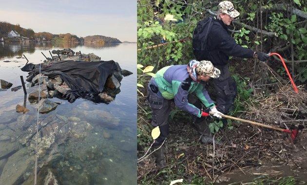 IKKE BRA: Et skjær ble spengt i stykker på Glomstein, og en bekk må ryddes for hageavfall. Det er alt annet enn optimalt for fisken som trenger gyteplasser i og rundt Oslofjorden.