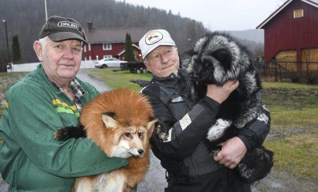 Både Olav Magne Kvisli og John Georg Songedal har drevet med pelsdyrproduksjon i mange tiår. Nå er det slutt. Arkivfoto