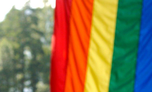 Det burde ikke være Kongens oppgave å legalisere homofili, skriver Ranveig Kristiansen i dette innlegget.