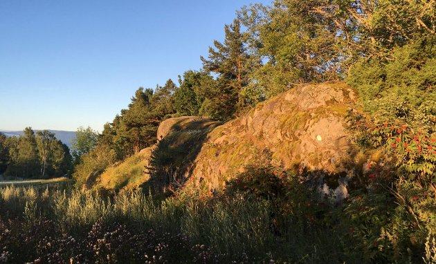 Blant annet akkurat her i Vollgata revnet bakken. Rester av en av de gamle spaltevulkanene med rombeporfyr.